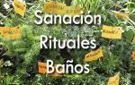 Rituales 2 al 8 Junio 2015 Ricardo Latouche Tarot