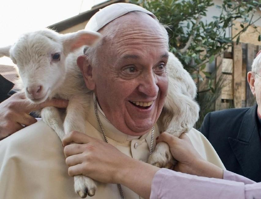 Papa Francisco y Fin del Mundo, papa francisco, fin del mundo, papa-francisco-y-una-oveja